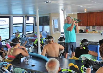 snorkel instruction
